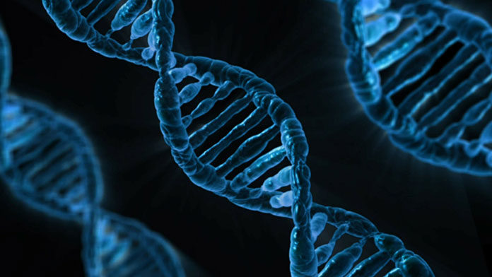 Po co robi się badania genetyczne podczas starań o dziecko